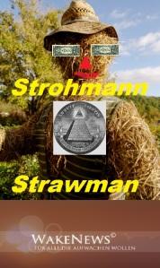 StramanWakeNews